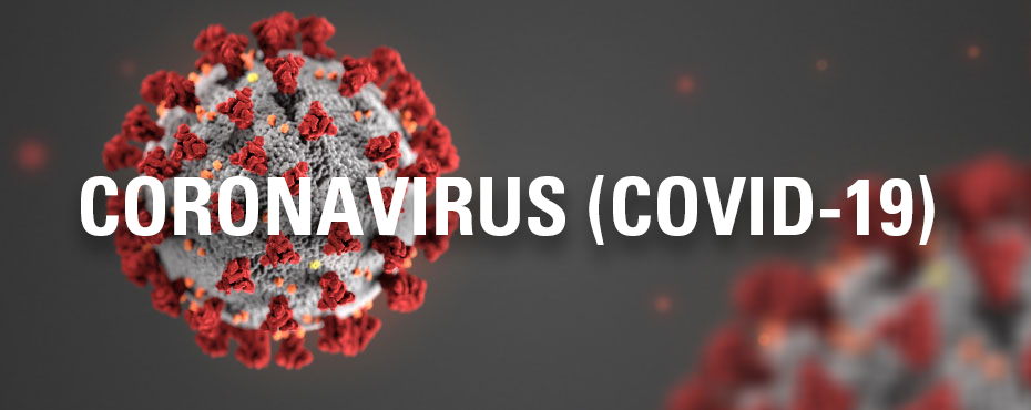 Essential Oils & COVID-19 (Coronavirus): What You Need to Know
